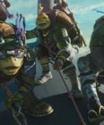 turtles01