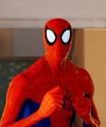 spidermanintothespiderverse01